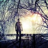 Человек на побережье, сияющем солнце и картине ветвей дерева Стоковая Фотография RF