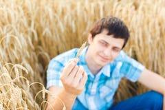 Человек на пшеничном поле Стоковая Фотография RF