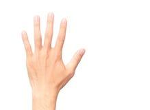 Человек показывая заднюю руку и палец 5 рассчитывать белую предпосылку стоковое изображение
