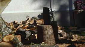 Человек прерывая древесину с осью 10 видеоматериал