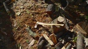 Человек прерывая древесину с осью 08 видеоматериал