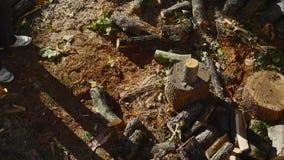 Человек прерывая древесину с осью 05 акции видеоматериалы