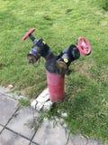 человек проверяя огнетушитель Стоковая Фотография