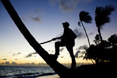 Человек против заходящего солнца Стоковая Фотография RF