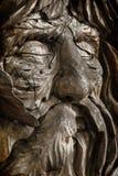 человек пущи старый Стоковая Фотография RF