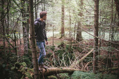 человек пущи стоя молод Стоковое Фото