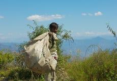Человек работая в Гималаях Стоковая Фотография
