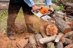 Человек режа деревянные журналы с цепной пилой Стоковая Фотография