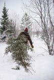 Человек режет дерево Стоковые Изображения RF