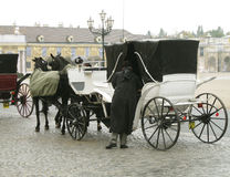 Человек сидя вниз в лошадях экипажа. Стоковое Фото