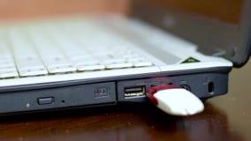Человек соединяет привод вспышки USB к компьтер-книжке сток-видео