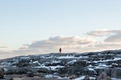Человек стоя на скале Стоковое Изображение RF