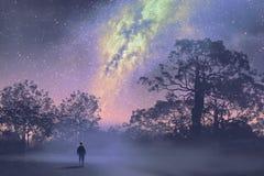 Человек стоя против млечного пути над лесом иллюстрация вектора