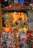 Человек сделанный от овощей Стоковые Фотографии RF