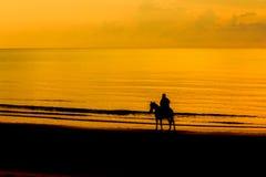 Человек с лошадью на береге моря Стоковое Изображение RF
