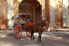 Человек с экипажом лошади ищет клиенты стоковые фотографии rf