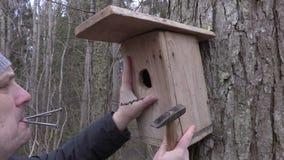 Человек с birdhouse, молоток и ногти приближают к дереву акции видеоматериалы