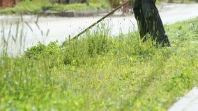 Человек травокосилки косит траву для того чтобы сделать красивый дизайн сток-видео