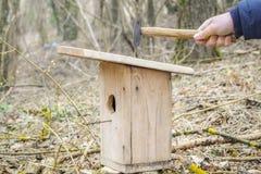 Человек ударил ноготь в birdhouse стоковое изображение rf