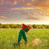 Человек фермера работая в саде лука с сапкой Стоковое Фото