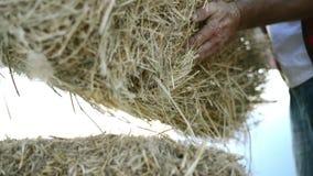 Человек фермера с связками соломы видеоматериал
