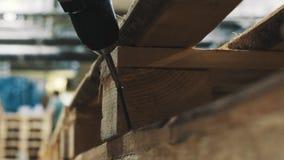 Человек Carpeter кладет винт в деревянную структуру паллета в мастерской акции видеоматериалы