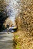 Человек jogging Стоковое Фото