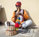 Человек Rajasthani с коброй Стоковое Изображение