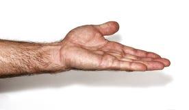человек s руки Стоковое фото RF