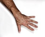 человек s руки Стоковые Изображения RF