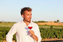 Человек Winemaker выпивая розовое или красное вино, виноградник Стоковые Фотографии RF