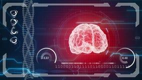 Человеческая анатомия Человеческий мозг Предпосылка HUD Будущее медицинской концепции анатомическое видеоматериал