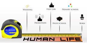 Человеческая жизнь иллюстрации Infographic измеряя Стоковая Фотография RF