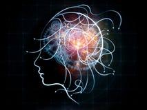 Человеческая динамика Стоковое Изображение RF