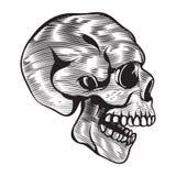 Человеческая иллюстрация года сбора винограда черепа вектора иллюстрация штока