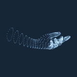 Человеческая рука Человеческая модель руки Скеннирование руки Взгляд человеческой руки геометрический дизайн 3d кожа заволакивани Стоковые Фотографии RF