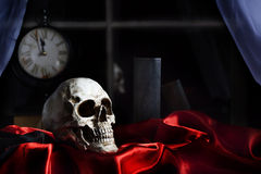 Человеческая сатинировка красного цвета черепа Стоковые Изображения RF