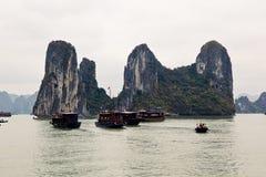 Человеческие характеристики Вьетнама стоковые изображения
