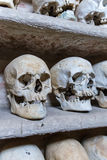 Человеческие черепа внутри катакомб Стоковое фото RF