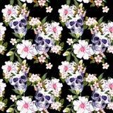 Человеческие черепа, цветки на черной предпосылке картина безшовная акварель Стоковые Изображения RF