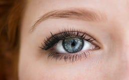 Человеческий голубой глаз. стоковая фотография