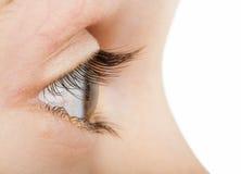 Человеческий глаз в профиле Стоковое Изображение RF