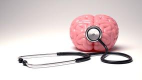 Человеческий мозг и стетоскоп, изолированные на белой предпосылке стоковое изображение