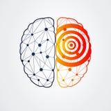 Человеческий мозг с деятельностью при эпилепсии, иллюстрацией вектора Стоковая Фотография