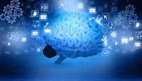 Человеческий мозг с значками интернета Стоковые Изображения