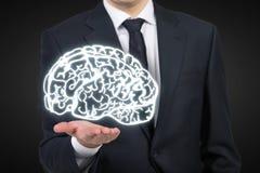 Человеческий мозг стоковая фотография rf