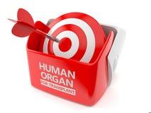 Человеческий орган для концепции трансплантата бесплатная иллюстрация