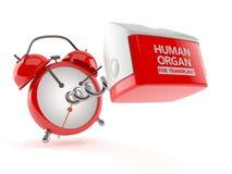 Человеческий орган для концепции трансплантата иллюстрация вектора