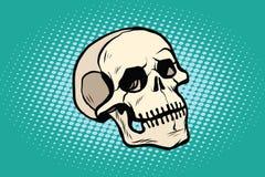 Человеческий скелет головы черепа иллюстрация штока