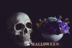 Человеческий череп около вазы цветка и деревянного алфавита Стоковые Изображения
